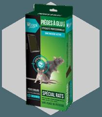 Pièges à glu pour rats