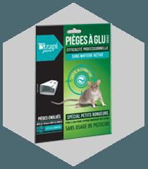 Piège à glu pour souris